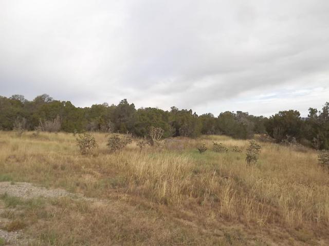 3 Lomas Drive, Edgewood, NM 87015 (MLS #932884) :: The Bigelow Team / Red Fox Realty