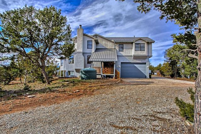 2 Luckie Lane, Sandia Park, NM 87047 (MLS #933076) :: The Bigelow Team / Realty One of New Mexico