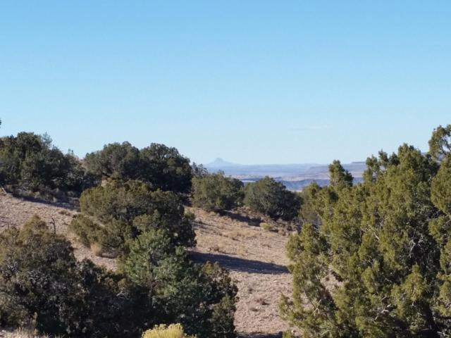 Camino Halcon, Placitas, NM 87043 (MLS #933119) :: Campbell & Campbell Real Estate Services