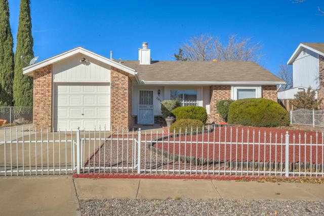 705 Puffin Street SW, Albuquerque, NM 87121 (MLS #933174) :: The Bigelow Team / Realty One of New Mexico