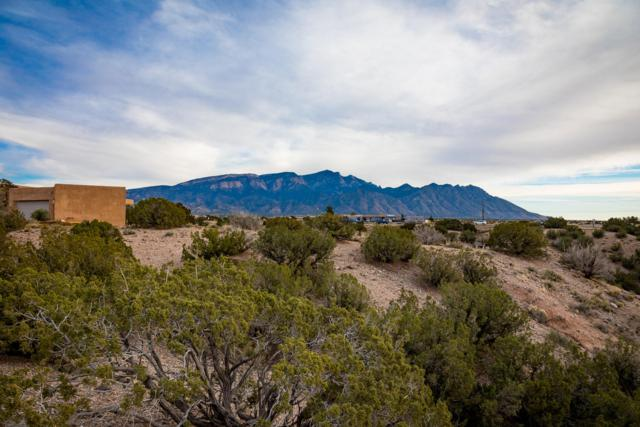 Stardust Court, Placitas, NM 87043 (MLS #933222) :: Campbell & Campbell Real Estate Services