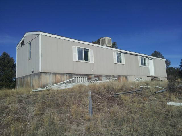 100 Ridgetop Circle, Pie Town, NM 87827 (MLS #933296) :: Campbell & Campbell Real Estate Services