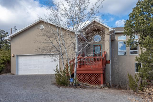 3 Twin Tree Court, Cedar Crest, NM 87008 (MLS #933426) :: Campbell & Campbell Real Estate Services