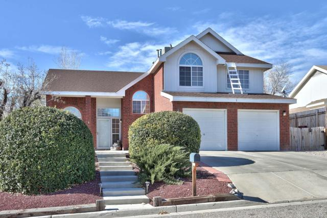 3 Juniper Place, Los Lunas, NM 87031 (MLS #933567) :: The Bigelow Team / Realty One of New Mexico
