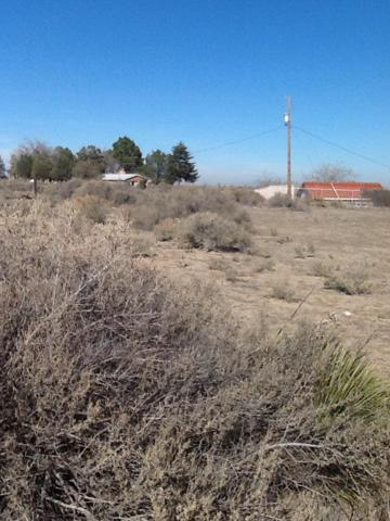 Ciani Court SW, Albuquerque, NM 87121 (MLS #933575) :: The Bigelow Team / Realty One of New Mexico