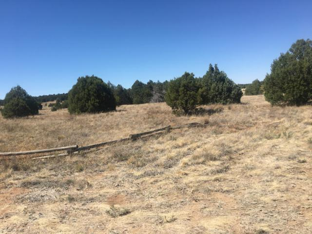 54 Pine Haven Road, Tijeras, NM 87059 (MLS #933588) :: Campbell & Campbell Real Estate Services