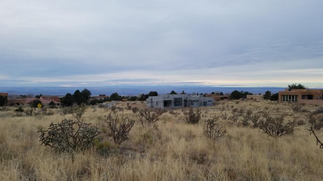 565 Black Bear Road NE, Albuquerque, NM 87122 (MLS #933756) :: The Bigelow Team / Realty One of New Mexico