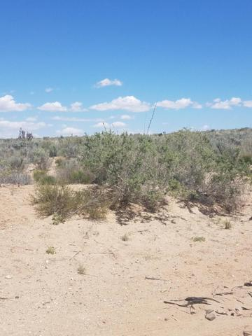 505 Hondo Road NW, Rio Rancho, NM 87124 (MLS #933790) :: Campbell & Campbell Real Estate Services