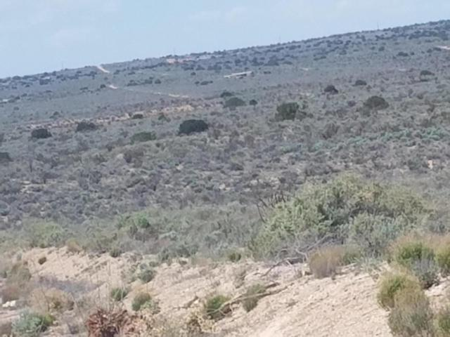 405 Hondo Road NW, Rio Rancho, NM 87124 (MLS #933793) :: Campbell & Campbell Real Estate Services