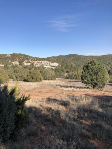 3 Canoncito Road, Cedar Crest, NM 87008 (MLS #933836) :: The Bigelow Team / Realty One of New Mexico