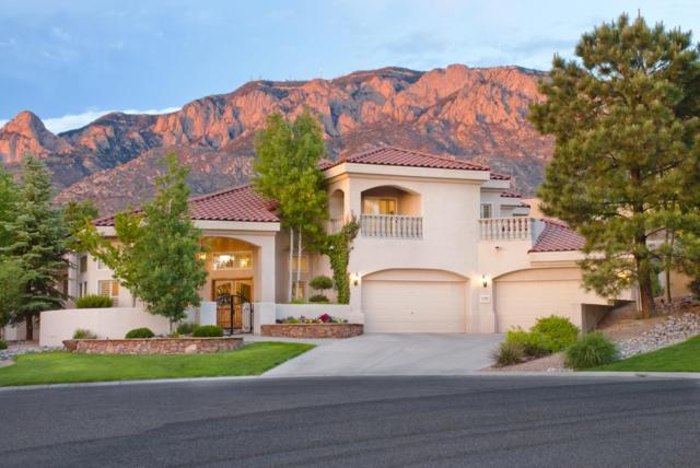 12409 New Dawn Road NE, Albuquerque, NM 87122 (MLS #933891) :: Campbell & Campbell Real Estate Services