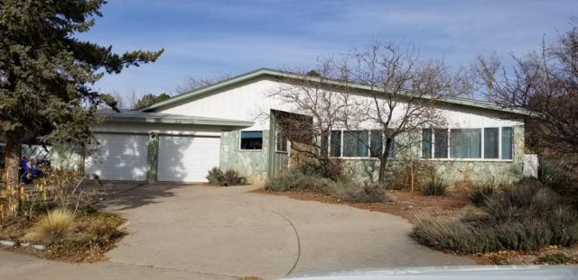 1512 Cedar Ridge Drive NE, Albuquerque, NM 87112 (MLS #934049) :: The Stratmoen & Mesch Team