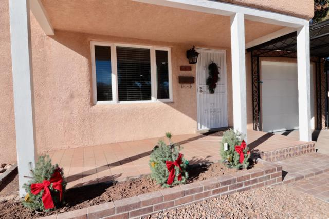 1513 Bryn Mawr Drive NE, Albuquerque, NM 87106 (MLS #934135) :: The Stratmoen & Mesch Team