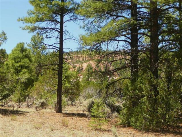 Lot 4 Yucca, Ramah, NM 87321 (MLS #934225) :: Campbell & Campbell Real Estate Services