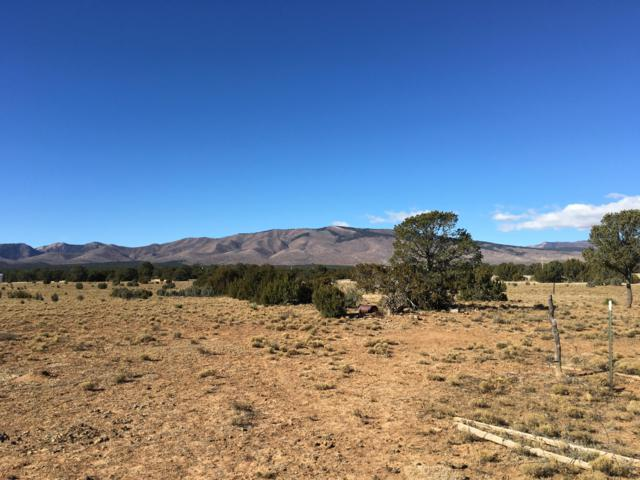 90 Ten Pines Road, Torreon, NM 87061 (MLS #934419) :: The Stratmoen & Mesch Team