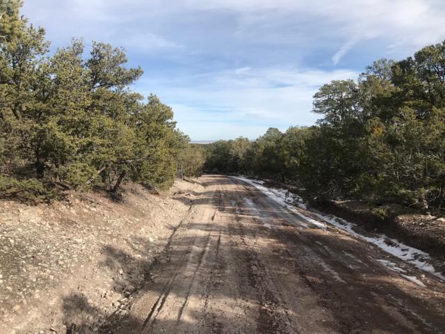 6 Vista Alta Drive, Tijeras, NM 87059 (MLS #934488) :: The Buchman Group