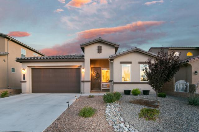 11904 Dahlia Avenue SE, Albuquerque, NM 87123 (MLS #934625) :: The Bigelow Team / Realty One of New Mexico