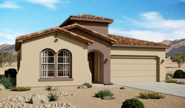 4078 Mountain Trail Loop NE, Rio Rancho, NM 87144 (MLS #934651) :: Campbell & Campbell Real Estate Services