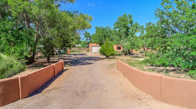 315 Target Road, Corrales, NM 87048 (MLS #934711) :: The Bigelow Team / Realty One of New Mexico