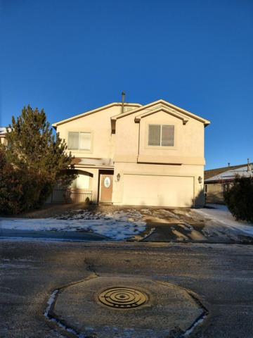 10104 Calle Placido NW, Albuquerque, NM 87114 (MLS #934845) :: The Bigelow Team / Realty One of New Mexico