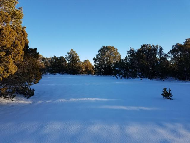6 Falcon Court, Tijeras, NM 87059 (MLS #934917) :: The Bigelow Team / Realty One of New Mexico