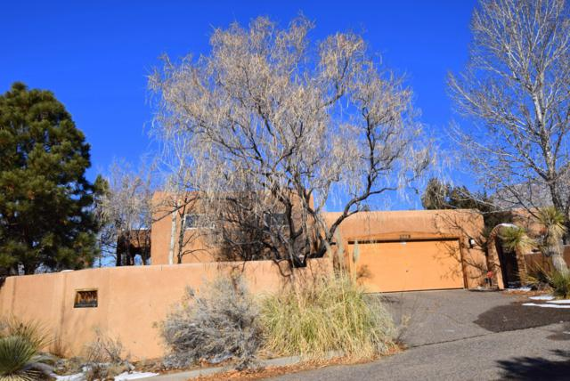 2776 Wolfberry Place NE, Albuquerque, NM 87122 (MLS #935020) :: Campbell & Campbell Real Estate Services