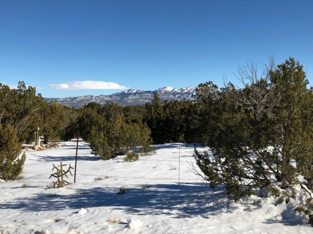 Pinion Park, Sandia Park, NM 87047 (MLS #935030) :: The Bigelow Team / Red Fox Realty