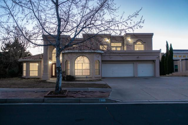 1309 Onava Court NE, Albuquerque, NM 87112 (MLS #935049) :: The Bigelow Team / Realty One of New Mexico