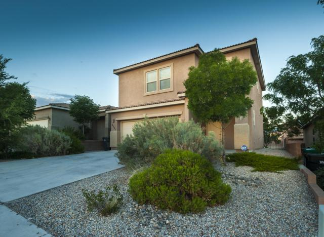 2205 Delfinio Drive SE, Rio Rancho, NM 87124 (MLS #935177) :: Your Casa Team