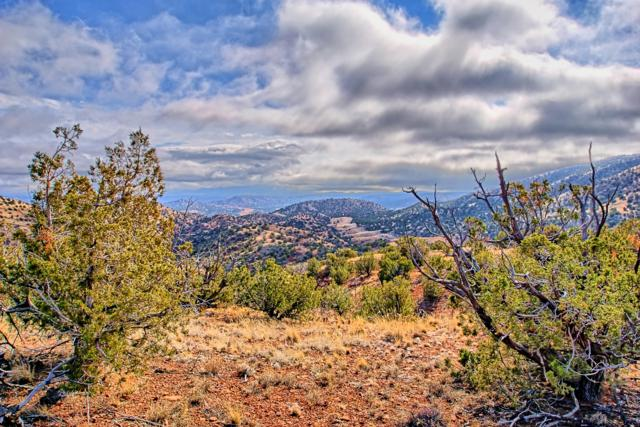 142 Diamond Tail Lot 45, Placitas, NM 87043 (MLS #935217) :: Campbell & Campbell Real Estate Services