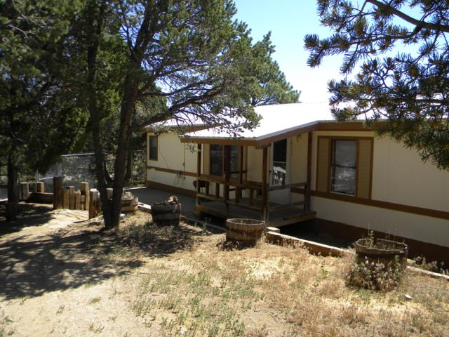 27 Raven Road, Tijeras, NM 87059 (MLS #935305) :: Campbell & Campbell Real Estate Services