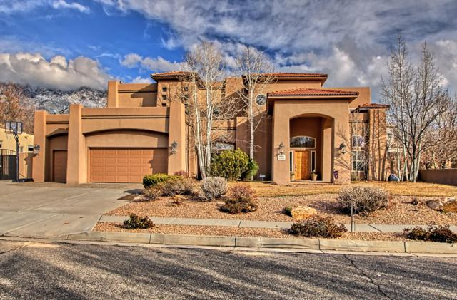 8604 Madras Drive NE, Albuquerque, NM 87122 (MLS #935403) :: Campbell & Campbell Real Estate Services