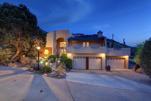 13604 Deer Trail Place NE, Albuquerque, NM 87111 (MLS #935443) :: The Bigelow Team / Realty One of New Mexico