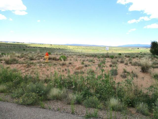 4 Express Drive, Edgewood, NM 87015 (MLS #935470) :: Campbell & Campbell Real Estate Services