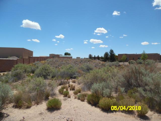 417 Albor Circle NE, Rio Rancho, NM 87124 (MLS #935605) :: The Stratmoen & Mesch Team