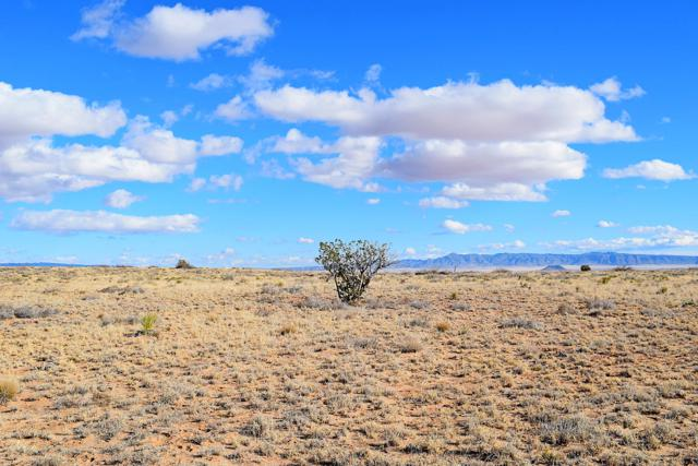 Lot 247 Rancho Rio Grande, Bosque, NM 87006 (MLS #935626) :: The Bigelow Team / Realty One of New Mexico