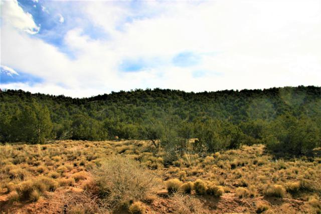 3049 Jumano Trail, Mountainair, NM 87036 (MLS #935646) :: Campbell & Campbell Real Estate Services