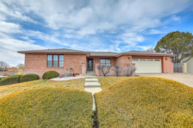 5301 Estrellita Del Norte Road NE, Albuquerque, NM 87111 (MLS #935652) :: The Bigelow Team / Realty One of New Mexico