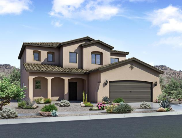 8701 Desert Finch Lane NE, Albuquerque, NM 87122 (MLS #935810) :: The Bigelow Team / Realty One of New Mexico