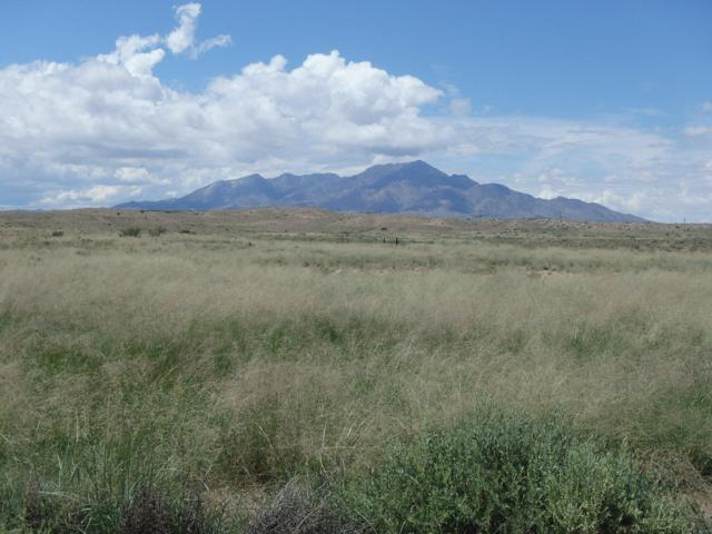 Rio Puerco Ranch, Bosque, NM 87006 (MLS #935999) :: Campbell & Campbell Real Estate Services