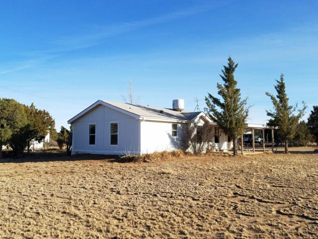 800 Cedardale Avenue, Mountainair, NM 87036 (MLS #936006) :: Campbell & Campbell Real Estate Services
