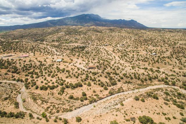 Arco Iris, Placitas, NM 87043 (MLS #936123) :: Campbell & Campbell Real Estate Services