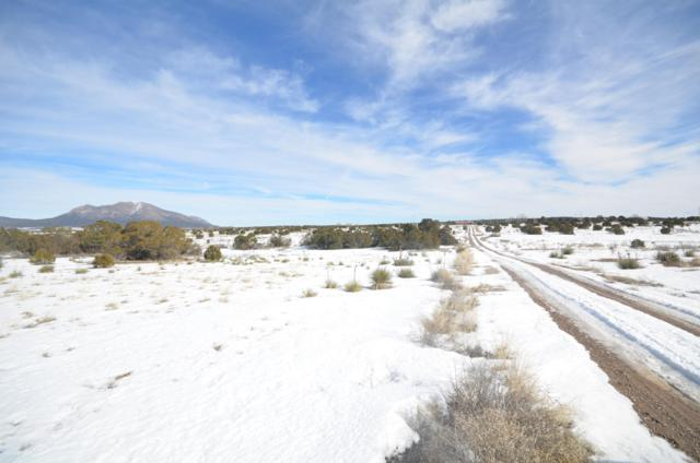 1153 Mountain Valley Road, Sandia Park, NM 87047 (MLS #936192) :: Campbell & Campbell Real Estate Services