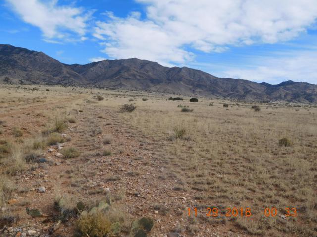 Taraugo Road, Belen, NM 87002 (MLS #936244) :: Campbell & Campbell Real Estate Services