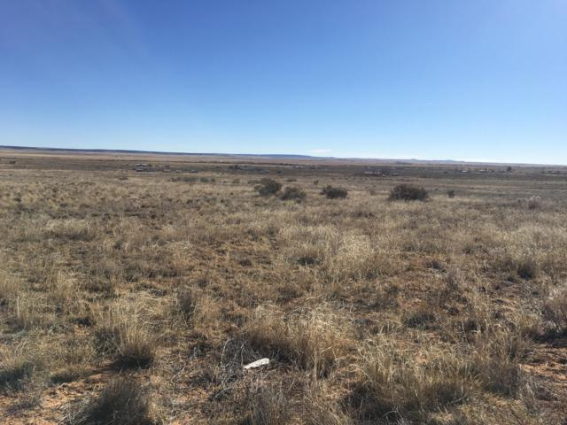 Bay Street, Moriarty, NM 87035 (MLS #936561) :: Campbell & Campbell Real Estate Services