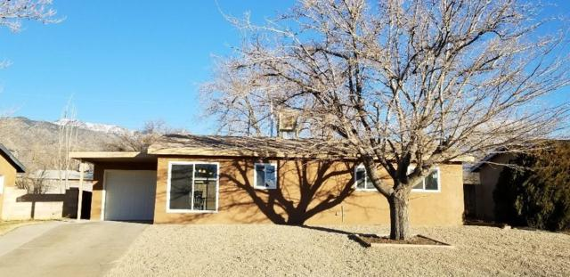 1712 Dorothy Street NE, Albuquerque, NM 87112 (MLS #936769) :: The Bigelow Team / Realty One of New Mexico