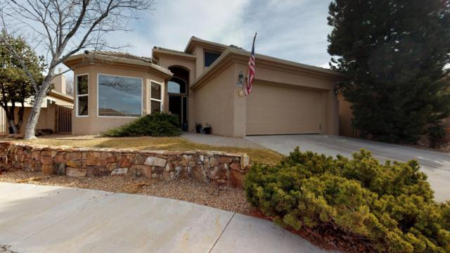 6108 Wildflower Trail NE, Albuquerque, NM 87111 (MLS #936799) :: Your Casa Team