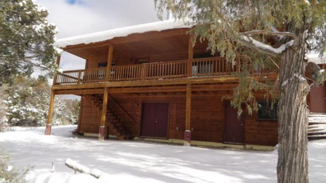197 County Road 341, Chama, NM 87520 (MLS #936834) :: The Bigelow Team / Realty One of New Mexico