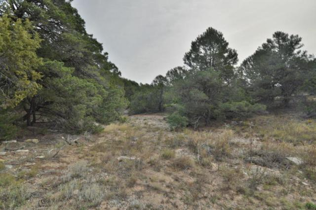46 Monte Verde Road, Tijeras, NM 87059 (MLS #936842) :: Campbell & Campbell Real Estate Services