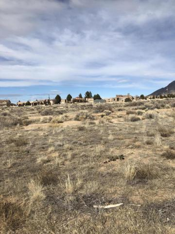 Alameda Boulevard NE, Albuquerque, NM 87122 (MLS #936849) :: Campbell & Campbell Real Estate Services